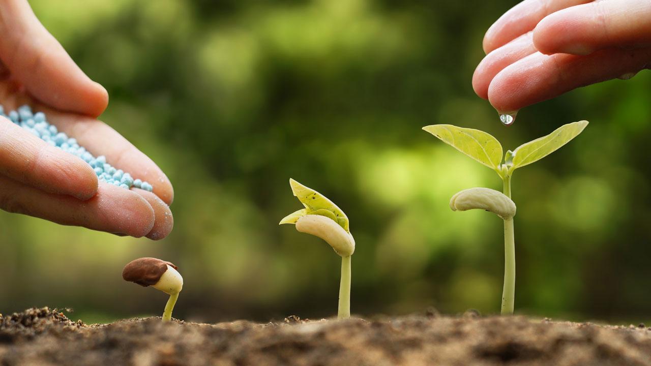 fertilizing communication