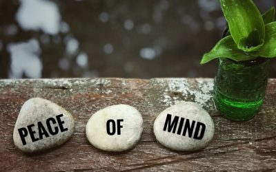 Allowing Stillness